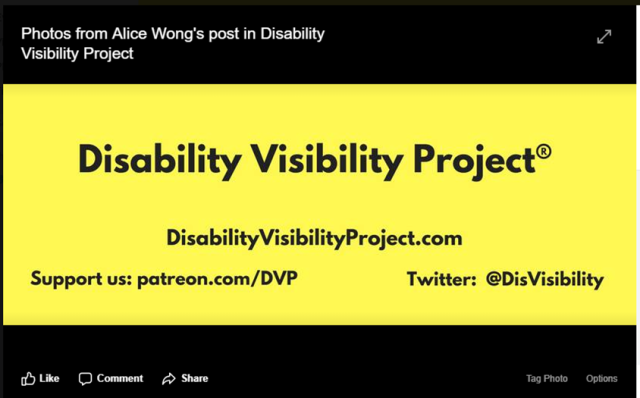 Disability Visibiilty Project - Facebook