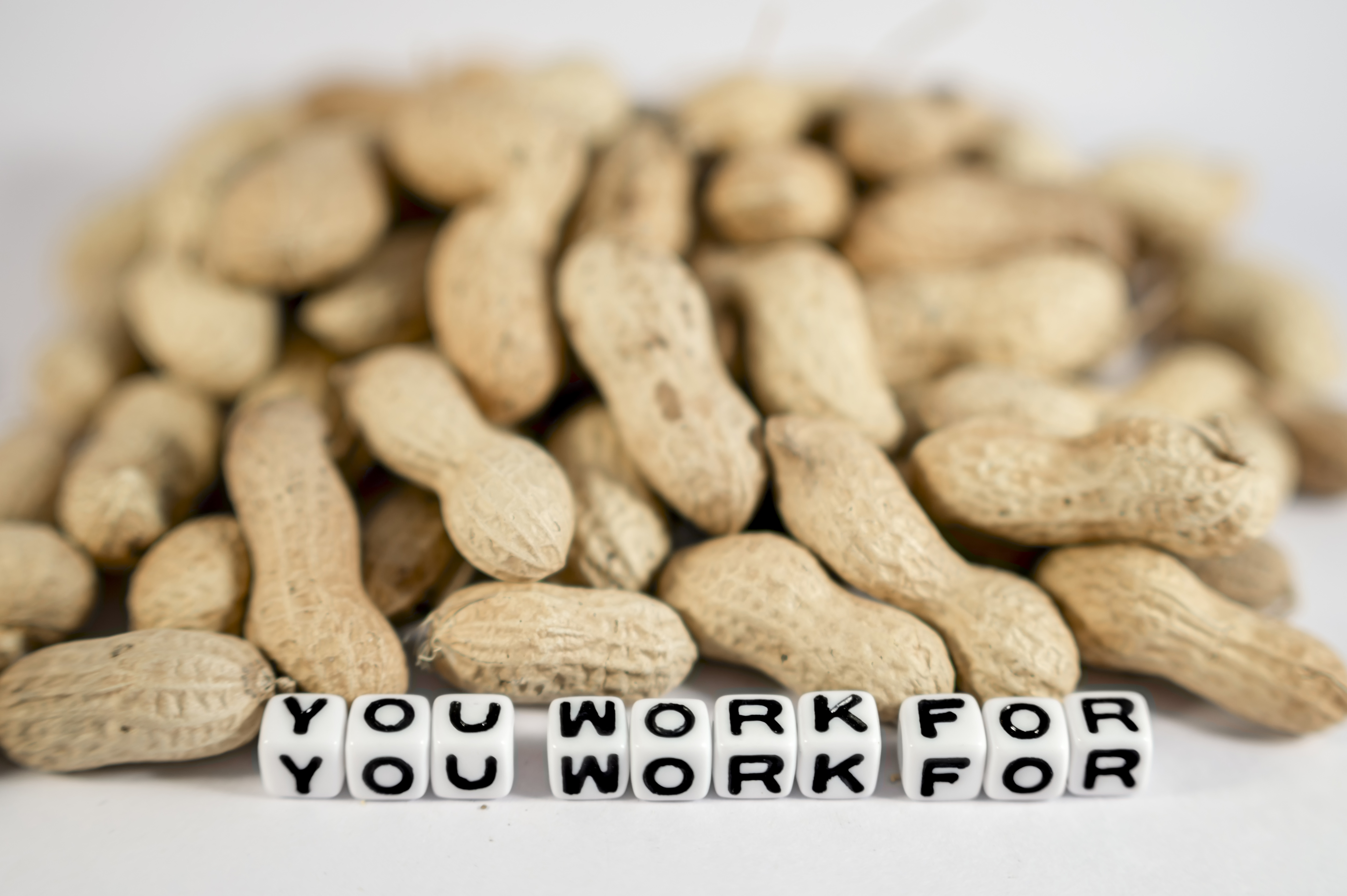 you work for peanuts.jpeg