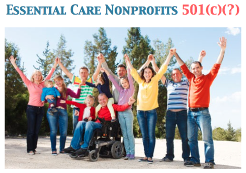 ECNs would be a new form of nonprofit entity serving the essential care needs of the rapidly growing population of indigent adults unable to care for themselves.